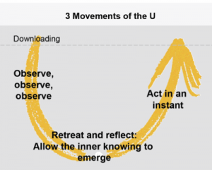 Theory U 3 movements